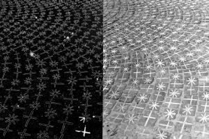 Rudolf Sikora, Alone With Photography, 1981-1986